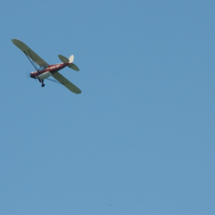Spotter plane is essential to find sharks in shallow water of Chatham