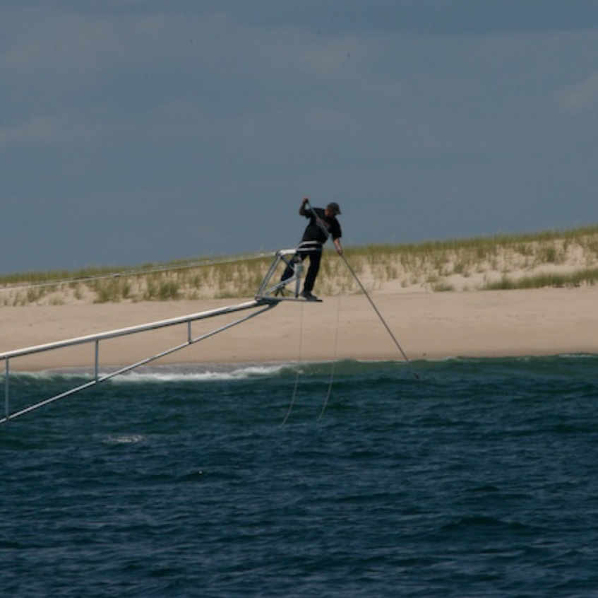 Preparing to _tag_ a white shark, off Monomoy