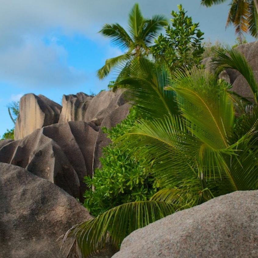 Island of Mahe, The Seychelles (Granitic Isl)