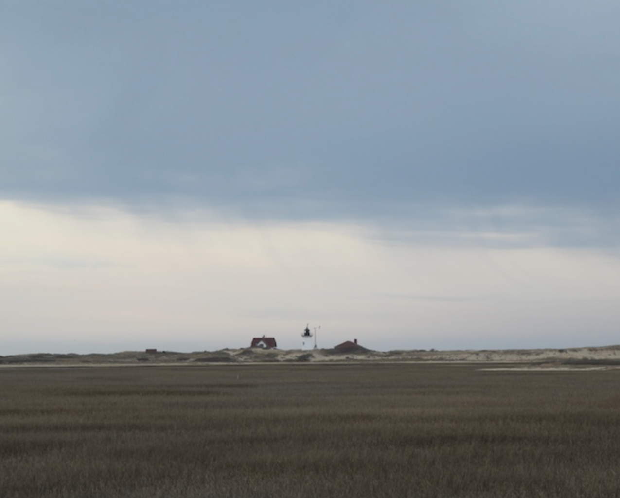Race Point in Spring