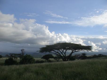 East Africa Journal – Kenya