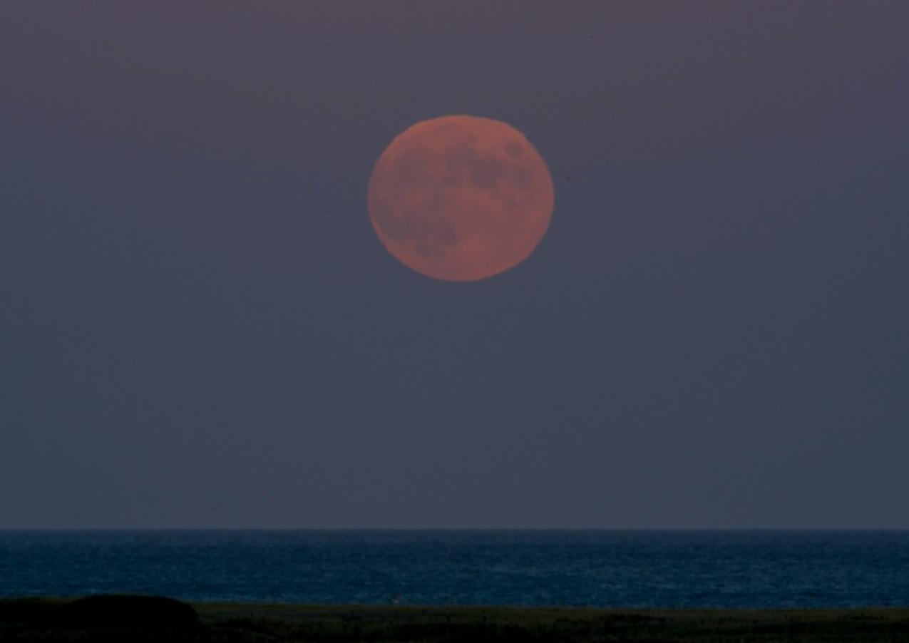 Hunter Moonrise - Chatham, MA