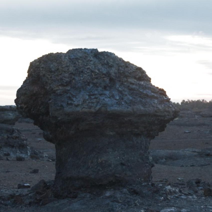 Ancient Tree molds from eruptions of the past
