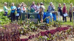Etwas ungläubig schauen die Gartenbesitzer der NSGM schon anbetrachts der Grösse von Edis Gemüse-Man