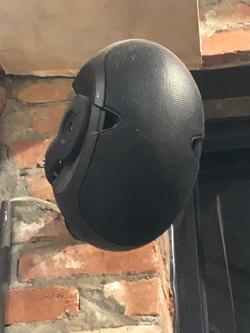 EV Indoor/Outdoor Surface Mount Speaker