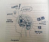 cerveau haut bas maison.png