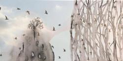 DREAMSCAPE Open Birdcages
