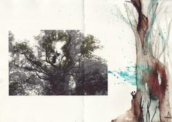 dans_la_forêt_lointaine_j'entends_le_r
