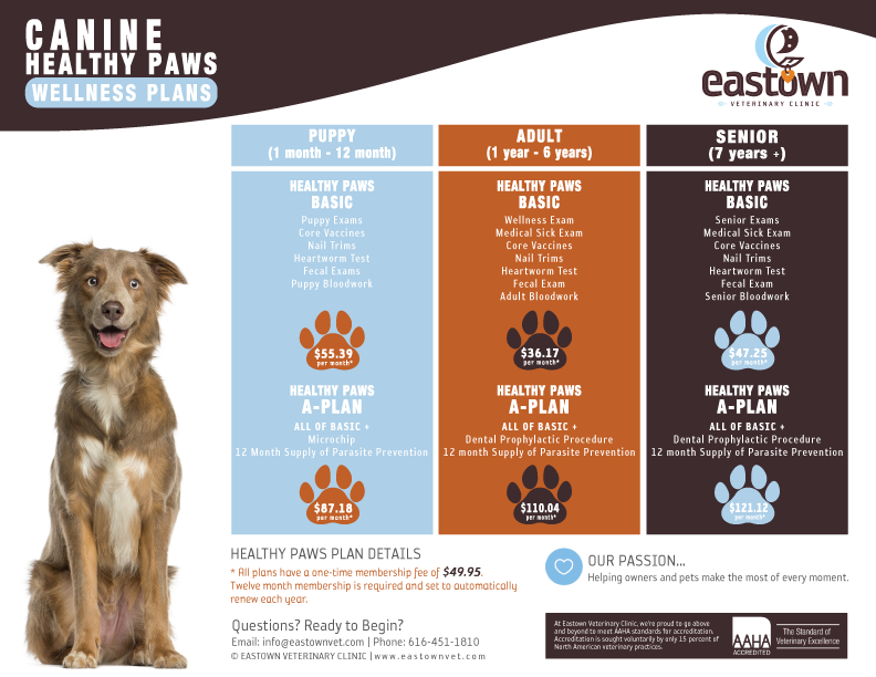 Canine Healthy Paws Wellness Plans