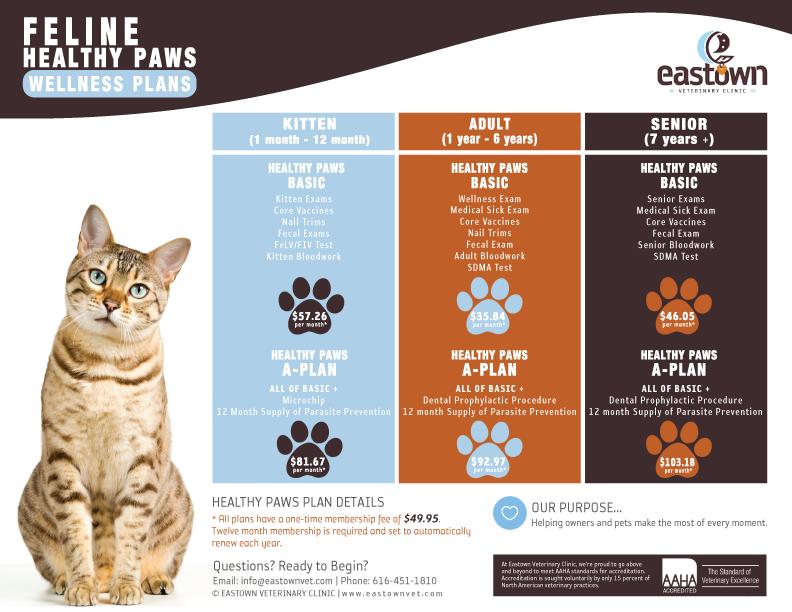 Feline Healthy Paws Wellness Plans