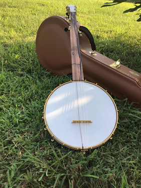Fretless Banjo August 2021 (10).jpeg
