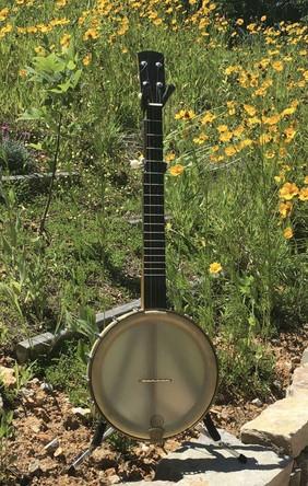 banjo 001-3.jpg