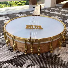 Fretless Banjo August 2021 (2).jpeg