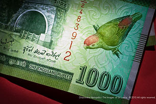 Sri Lanka rupee falls 3 pct to record low after c.bank floats � dealers