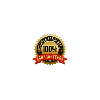 100% Customer Satisfaction Guaranteed! No upfront payment needed, only pay me if you are satisfied!