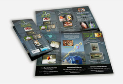 Brochure Design - 5 Working Artists
