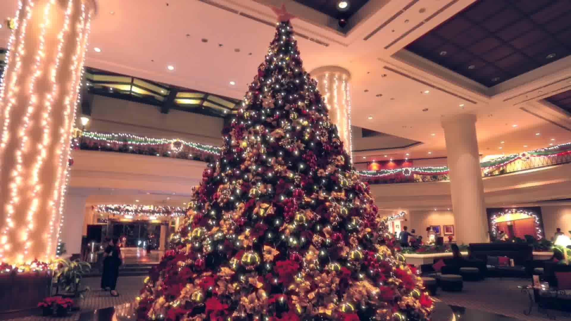 Sutera Harbour Resort Christmas Trailer 2017