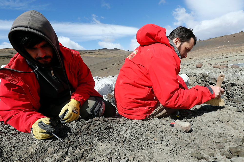 Expedición paleontológica de 2020. Felipe Trueba.