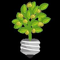 perenboom 1-5.png