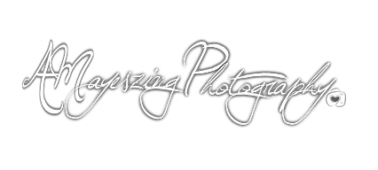 AMayesZing.png
