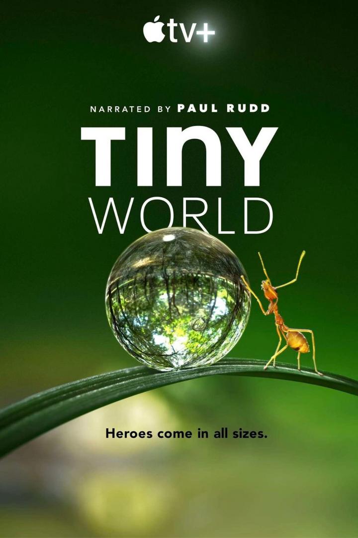 Tiny World (2020/21)