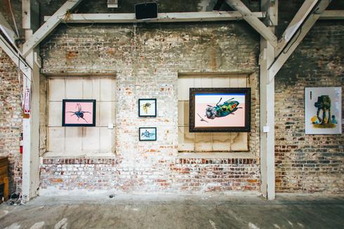 1Dirtybird-Art-Gallery-Finals-25.jpg