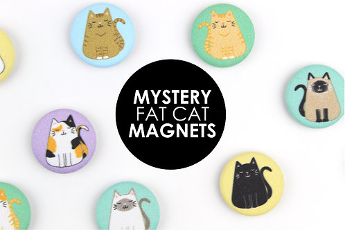 MYSTERY FAT CAT MAGNETS | SAVE 20%