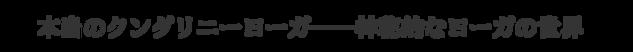 本当のクンダリニーヨーガ――神秘的なヨーガの世界ーヨーガスクール・カイラスー