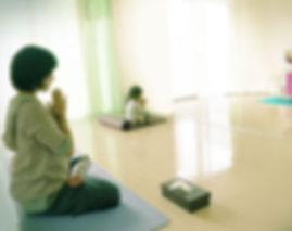 ハタヨーガ、クンダリニーヨーガ、中国の仙道に伝わる気功技法などを用いて、ナーディーの浄化・強化を目指します。ーヨーガスクール・カイラスー