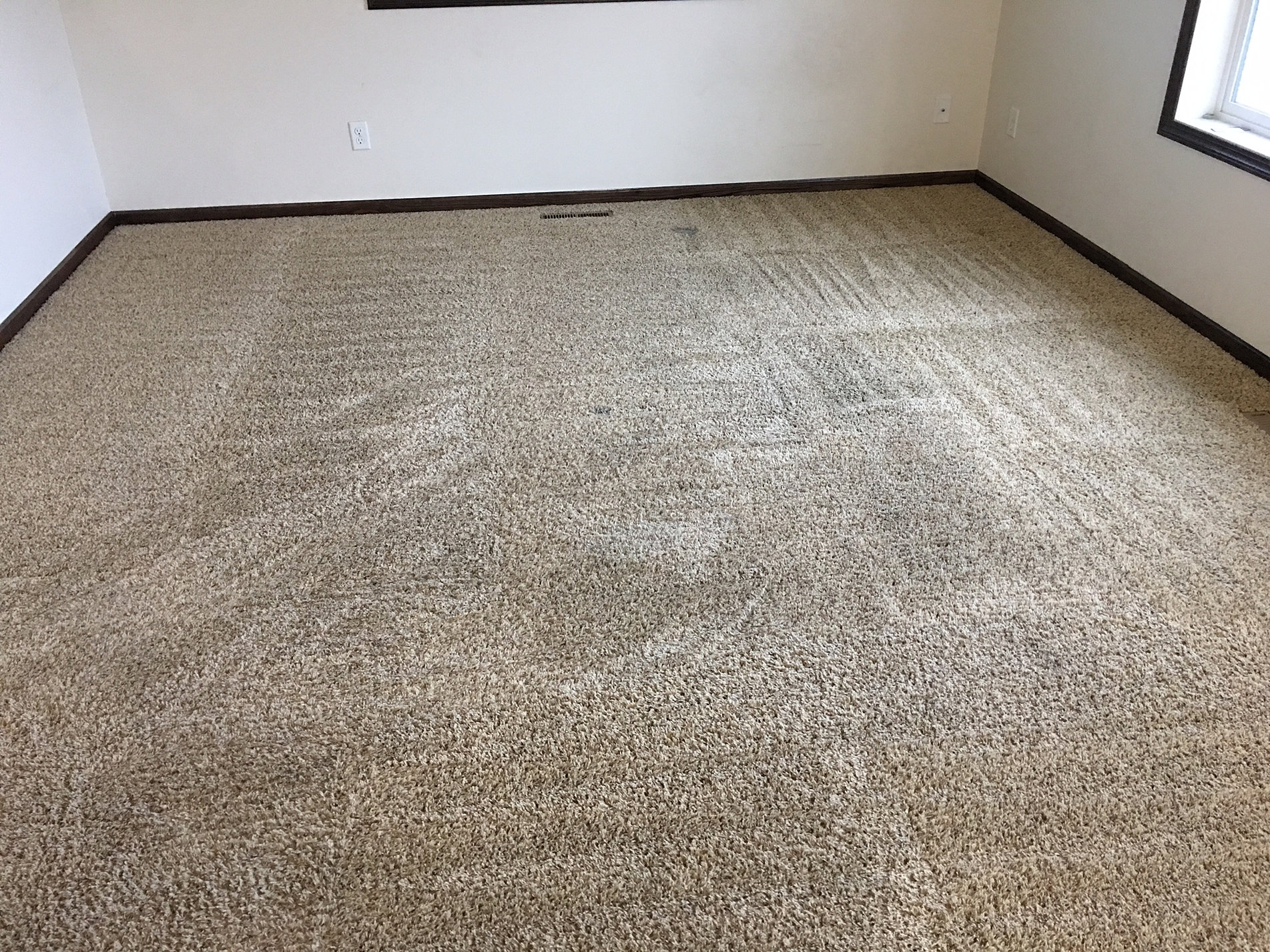 Express Carpet Cleaners Carpet Cleaning Service Discounts