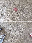 Express Carpet Cleaners Stain Removal Fargo Moorhead