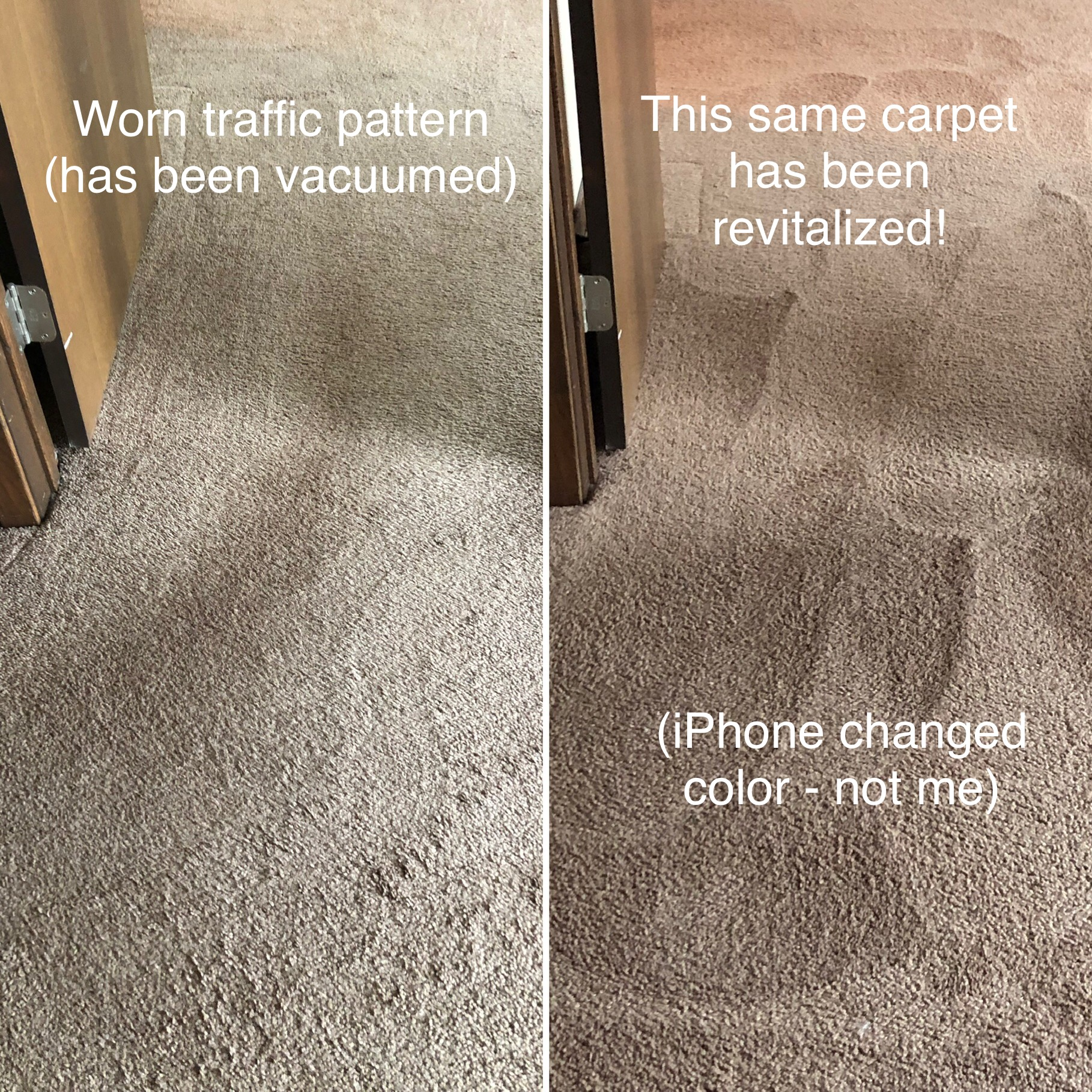 Revitalize Carpet Traffic pattern