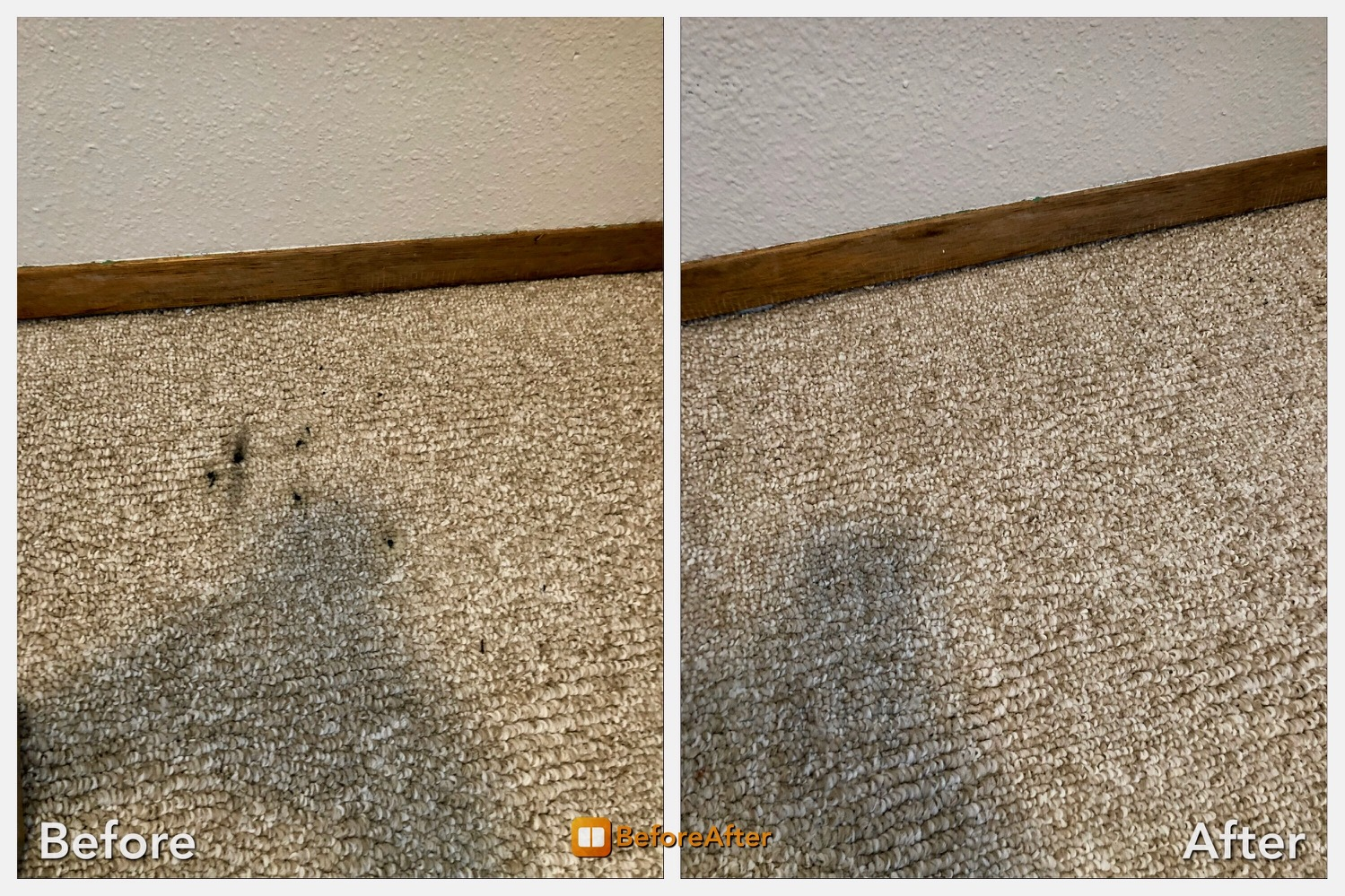 before after picture carpet