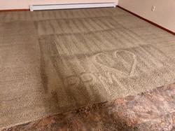 ppm carpet heart