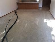 Carpet cleaner for apartments in Fargo