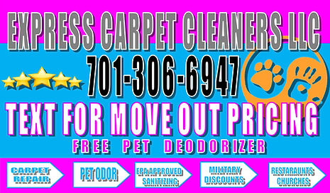 express carpet cleaners, carpet cleaners, flooded basement, cleaning services, pet odor, pet urine, carpet repairs