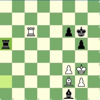 O garoto que ganhou de Kasparov
