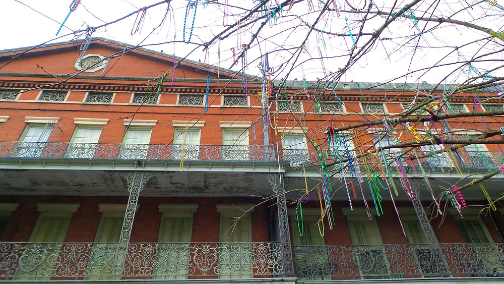 Bead Tree in Jackson Square I New Orleans Travel Guide I Nicole Riccardo