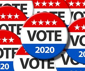 2020 Election where to vote in hutto tex