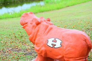 hutto football field hippo high school h