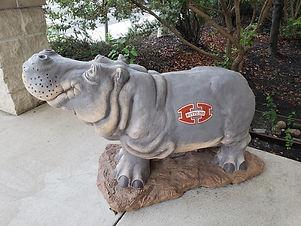 hutto isd hippo