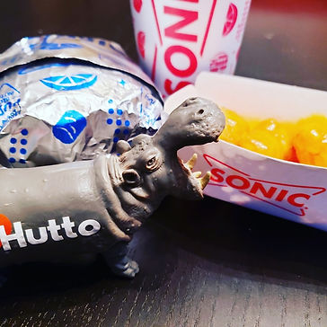 sonic hutto.jpg
