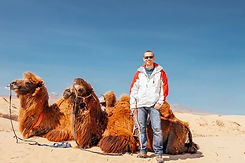 Tim Snell Life Coach Man standing with 2 hump camel in Mongolia