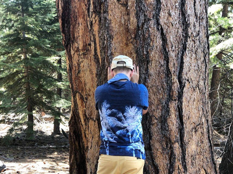 Learning from Nature at Lake Tahoe