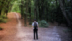 Man standing at a fork in the road in a forest