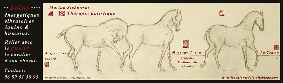 web chevaux avril 2020 .jpg