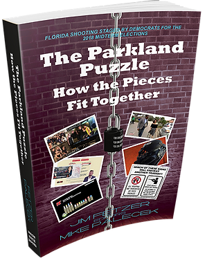 The Parkland Puzzle: How the Pieces Fit Together