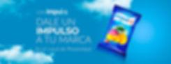 BANNER BOLSA DE PAPAS4 para wix.jpg