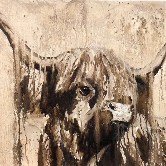 Highland Cattle in Oil Art Class