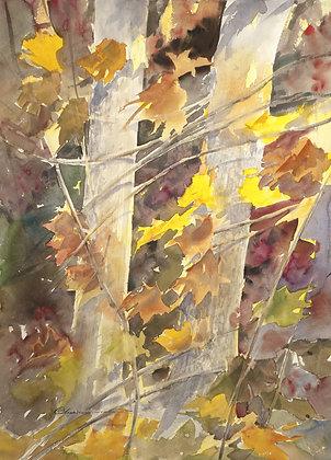 The Song of Autumn by Mohammad Reza Atashzad
